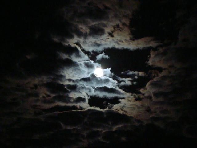 African Night Sky